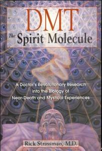 dmt-thespiritmoleculebyrickstrassman-1-728