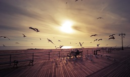 coney_island_boardwalk_by_barbroute-d3gn95p
